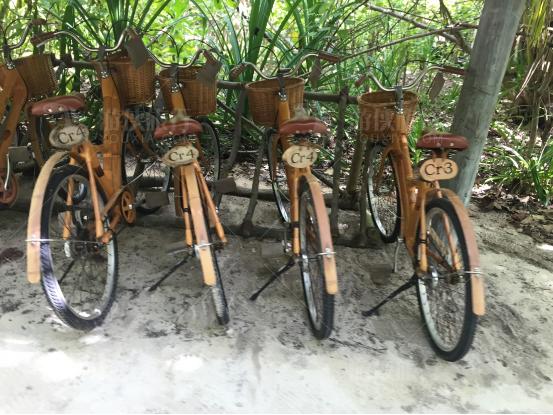 姬丽兰卡芙希自行车