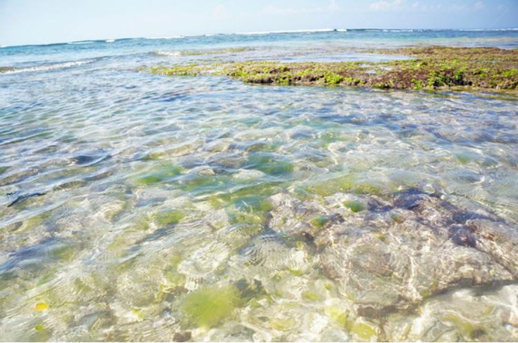 超级清澈的海水