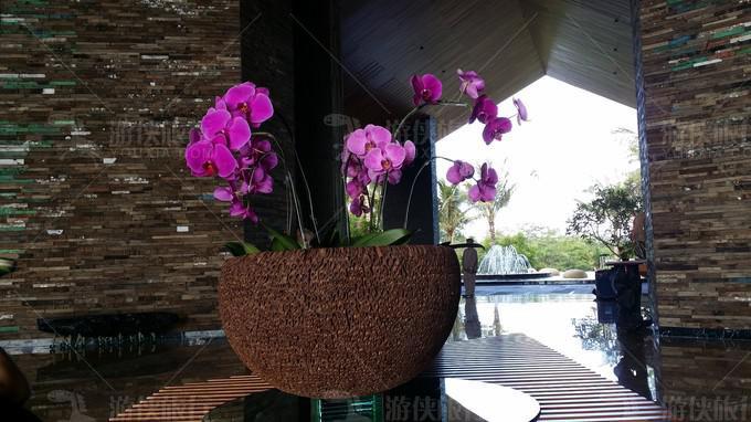 酒店大堂的花