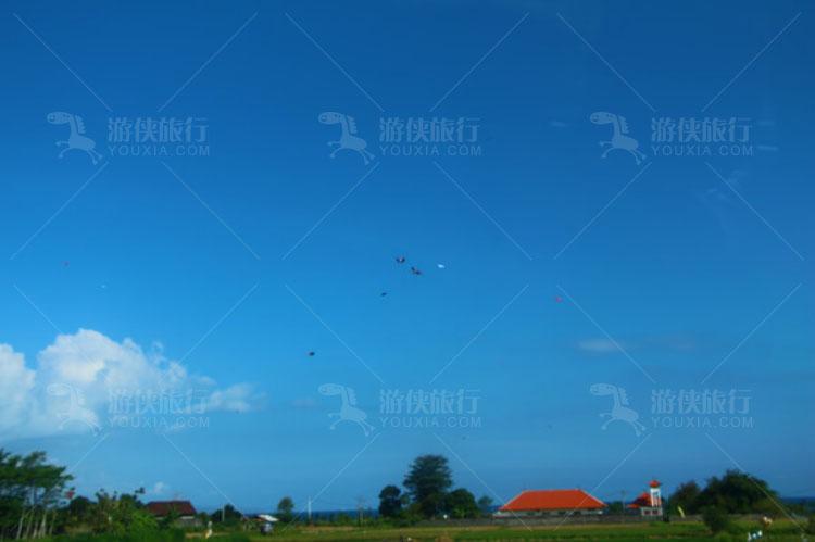 天空中到处都飘着风筝