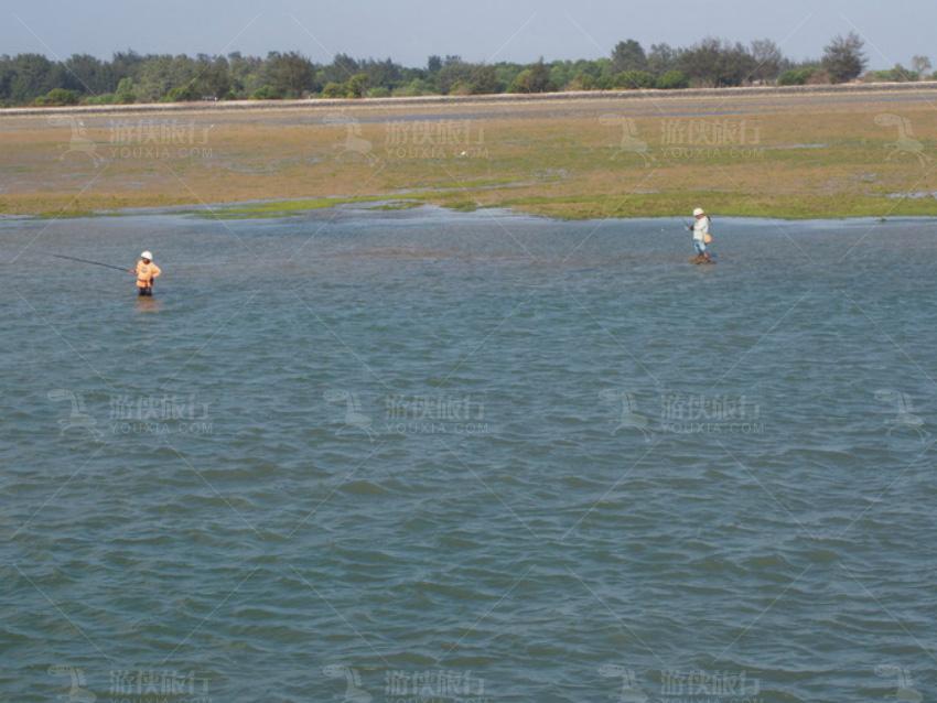 渔民会在这时下海网鱼