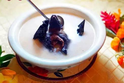 水果蝙蝠汤