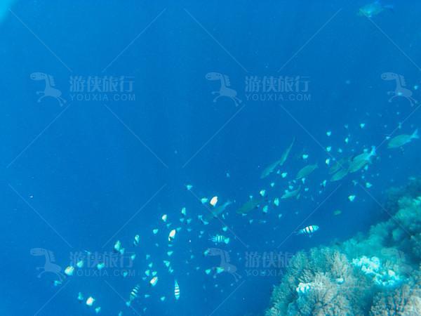 左边是几千米的海底