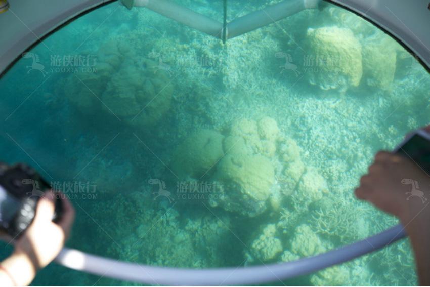 乘船出海看珊瑚