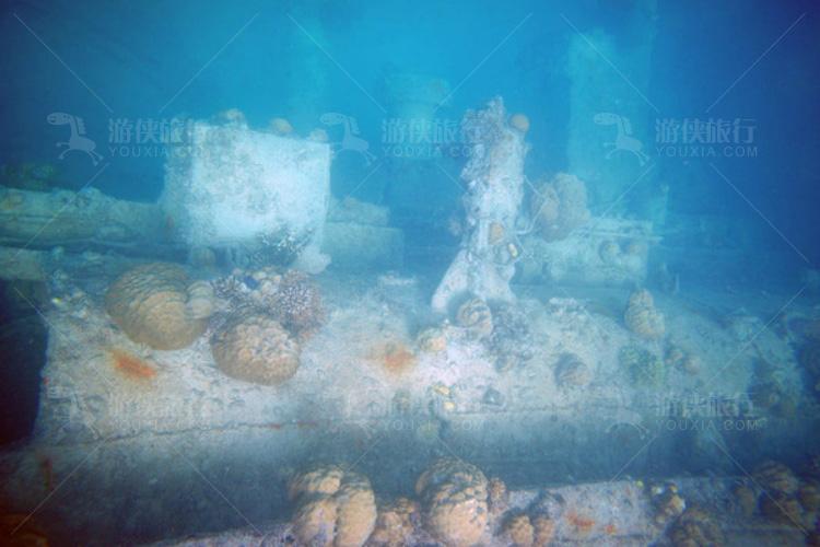 挂着珊瑚的船舷
