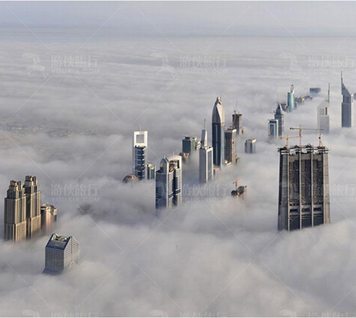 悉尼城被淹没在浓雾里