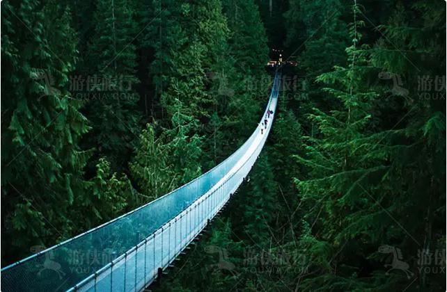 温哥华的卡普兰奴吊桥