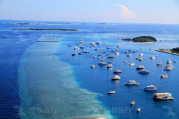 海面上有很多游艇