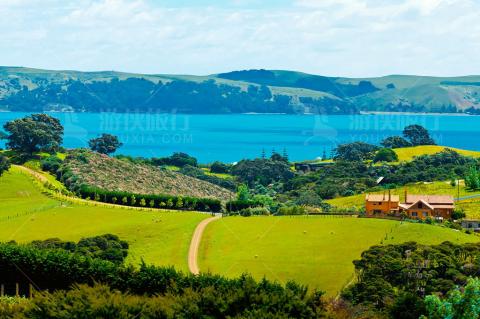 新西兰纤尘不染的生态环境