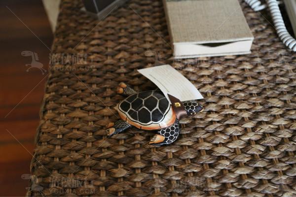 这里有一只小乌龟