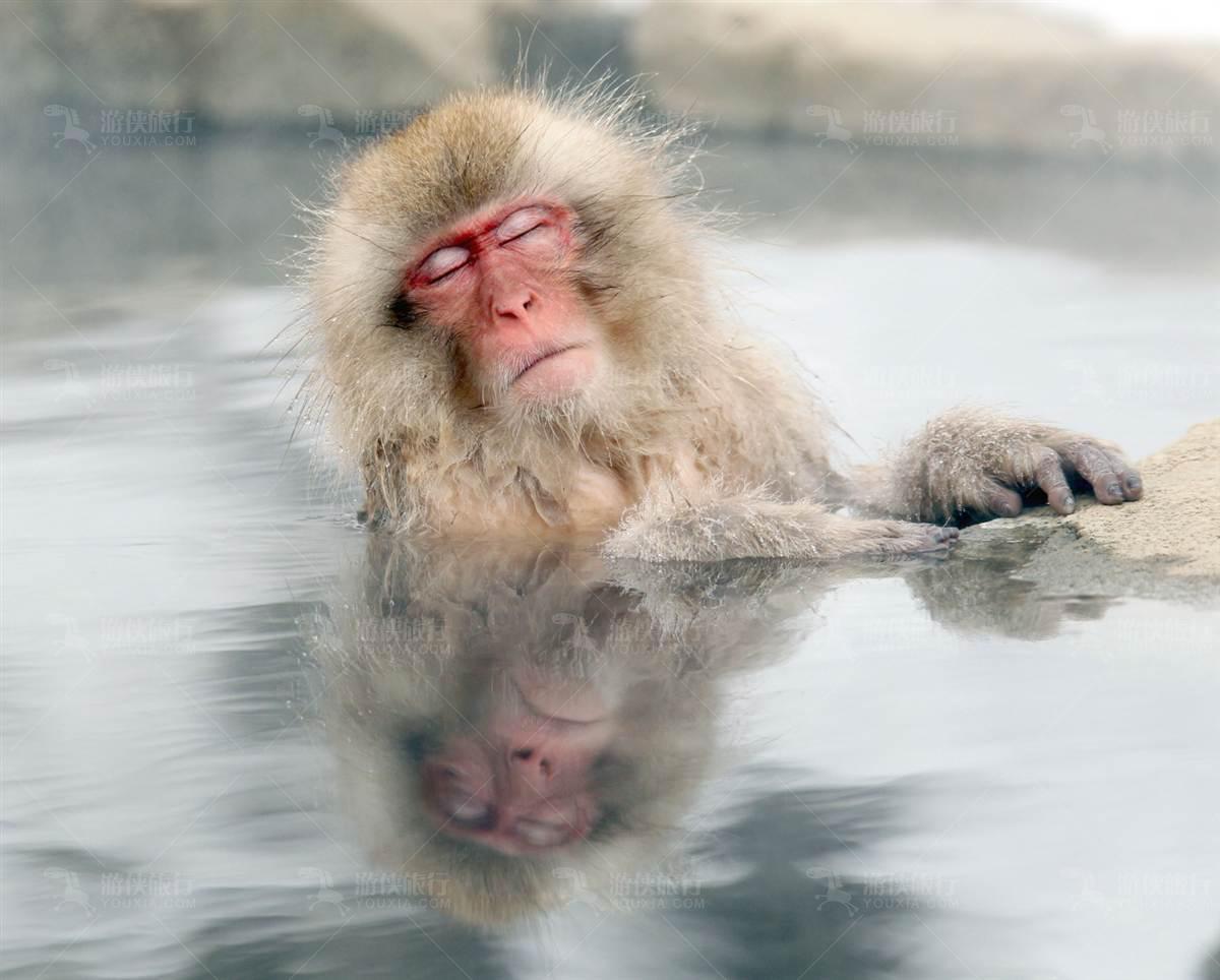 日本别府温泉