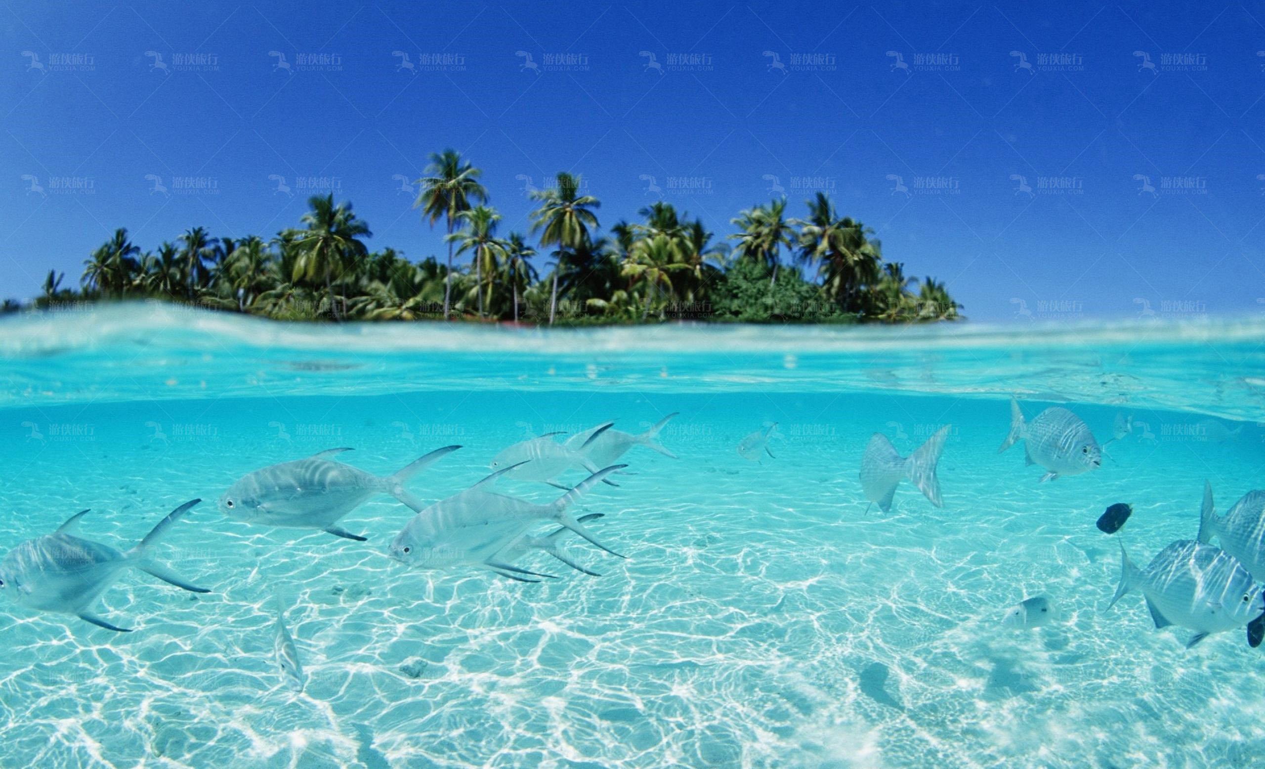 印度洋海水全年常温