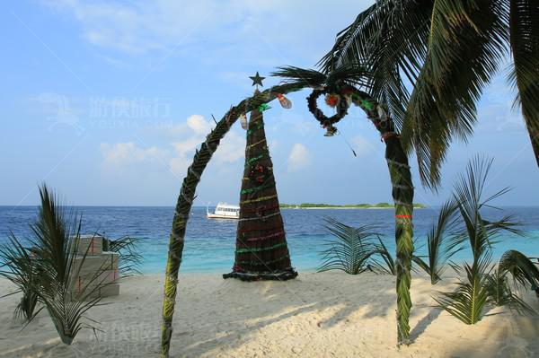 华丽的圣诞树