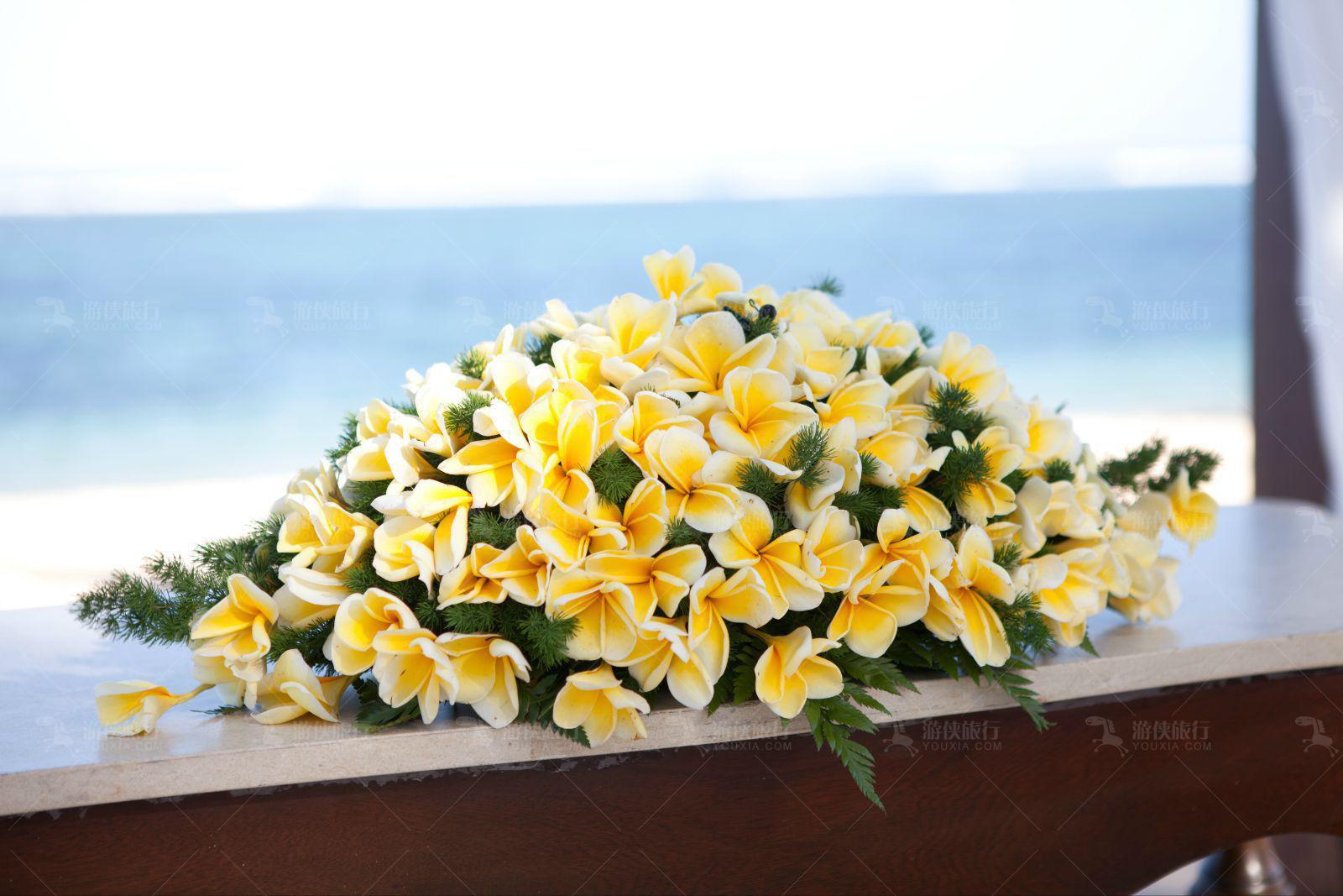 象征巴厘岛的鸡蛋花