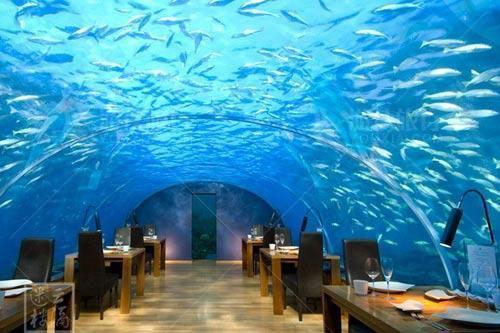 马代白马庄园水下餐厅