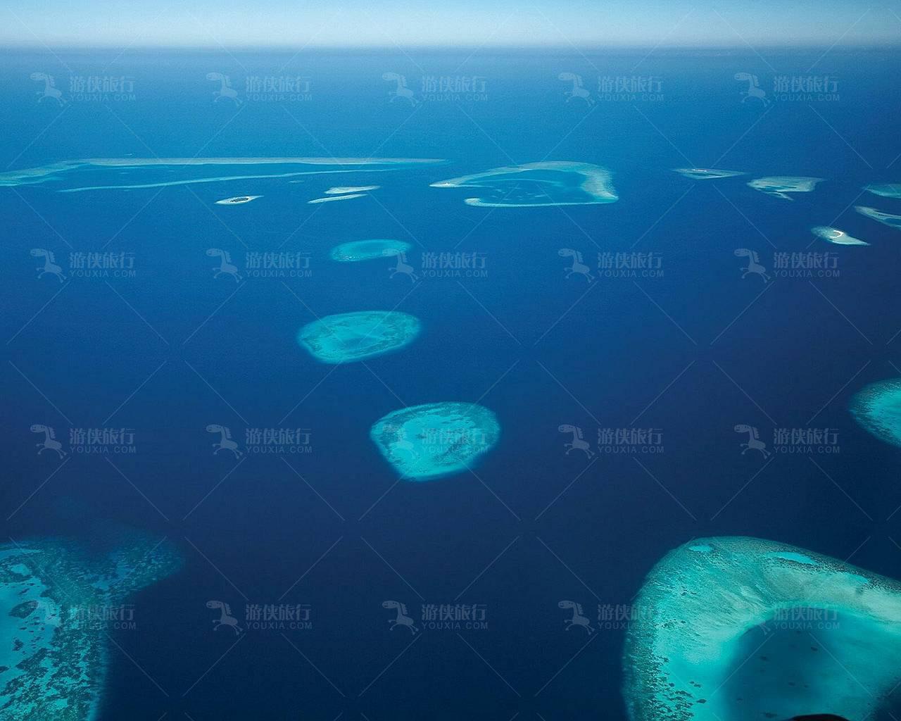 世界最大珊瑚国度