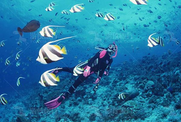 马代鲁彬逊岛浮潜