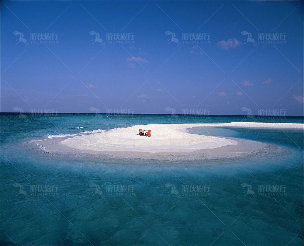 马尔代夫丰富的鱼类资源