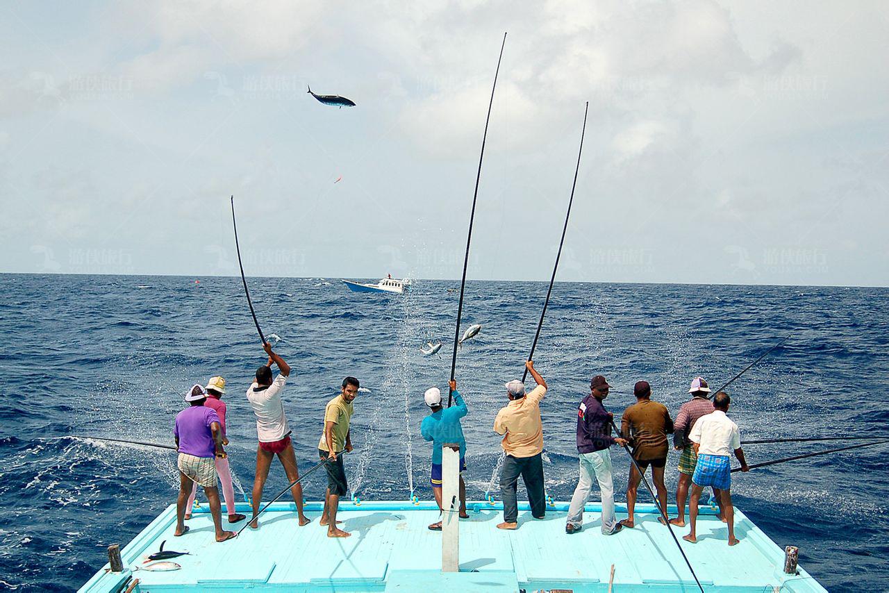马尔代夫钓鱼