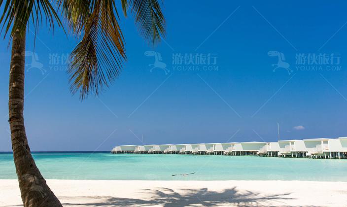 马尔代夫阿米拉富士岛