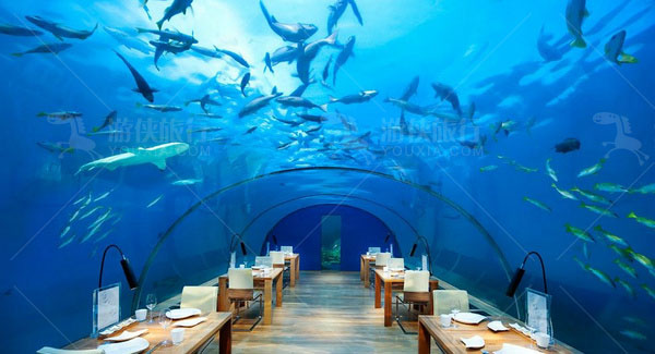 马尔代夫港丽岛水下餐厅
