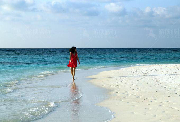 蓝色美人蕉海边