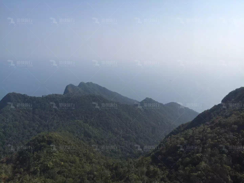 兰卡威世界地质公园森林