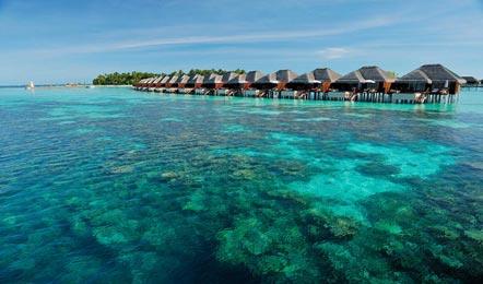 馬爾代夫阿雅達Ayada Maldives6天4晚自由行(性價較高、中文服務、贈送蜜月服務、)