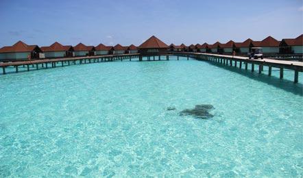 馬爾代夫魯賓遜島Robinson Club Maldives6天4晚自由行(一價全包、性價比高、島上浮潛工具可以免費租借、酒店里有中國廚師、比較符合中國人的胃口)