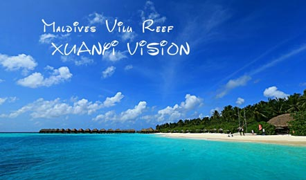 马尔代夫美露丽芙岛Vilu Reef Beach&Spa Resort6天4晚自由行(家庭蜜月、含早晚餐HB、水飞上岛、中文服务)